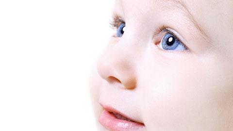 人體必需的脂肪酸有助大腦、眼睛的發展